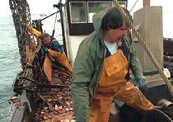 Lippens pleit voor visserijvrede