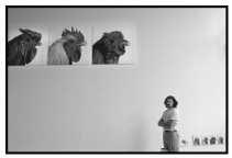 Koen Van Mechelen op zijn tentoonstelling in het Hasseltse kunstencentrum Z33.