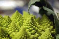 Romanescu (een groente!), of de geometrische elegantie van de natuur.