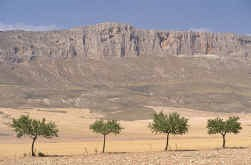 Het landschap bij Almería: uitermate geschikt voor Hollywoods Far West.