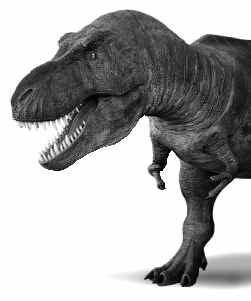 T. rex.