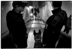 Zeshonderd camera's en driehonderd bewakingsagenten controleren de Brusselse metro.