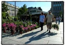Zo'n vijftien handelaars bieden hun bloemen en planten aan op de Kouter in Gent.