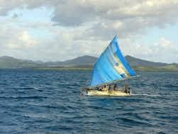 Melanesische zeilkano. Een nieuwe stamboom van de Papoeatalen die in dit gebied ten oosten van Papoea-Nieuw-Guinea worden gesproken, komt op z'n hoofdtakken netjes overeen met de verschillende eilandengroepen.