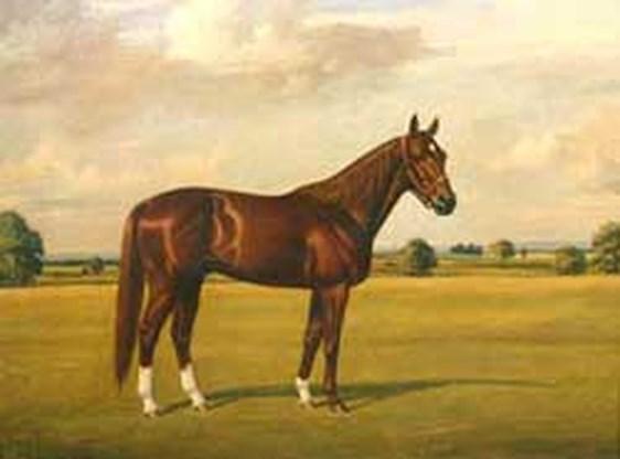 Paardenschilder Richard Stone Reeves overleden