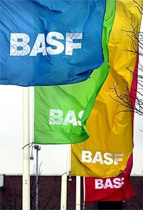BASF Antwerpen heeft goed jaar achter de rug