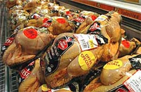 Vogelgriep kostte ons land al 20 miljoen euro