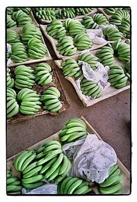 Gevangenen moeten bananenoverschot opeten