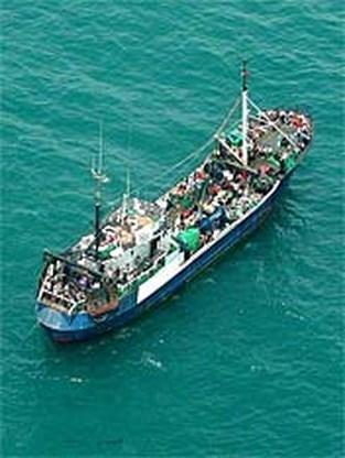 Tientallen boten met illegalen op weg naar Spanje