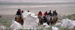 De zes jongeren, vier jongens en twee meisjes, trokken te paard over de Andes.