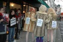 HASSELT Enkele activisten van de dierenrechtenorganisatie Bite Back, ondermeer verkleed als Phaedra Hoste en Veronique De Kock, trokken zaterdag naar enkele bekende modezaken in Hasselt. Ze protesteerden er tegen het dragen en verkopen van bont. Dames en