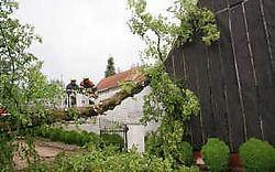 De boom bleef rusten op de hoek van de woning waardoor het dak niet volledig werd vernield.fkd<br>