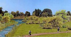 Een simulatiefoto van het toekomstige Park Linkeroever, dat ontstaat door de samenvoeging van de Middenvijver met de Burchtse Weel en het Sint-Annabos. Naast een deel voor recreatie komt er ook een zone waar vogels kunnen worden geobserveerd. rr<br>