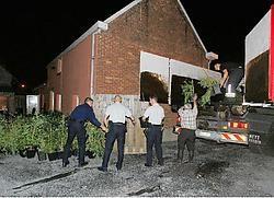 In Uitbergen werden zo'n vierhonderd cannabisplantjes in beslag genomen. Hendrik De Rycke