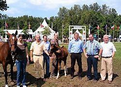 VSPV-organisatoren Dirk Zagers, Luk Van Puymbroeck, Koen Roete, Hubert Hamerlinck en Patrick Gansbeke met het veulen Henrico Van den Bosrand en diens moeder.Frederiek Vande Velde