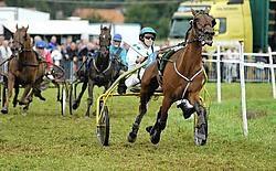 De paardenkoers in Ruiselede blijft jaarlijks een massa volk lokken. Frank Meurisse<br>