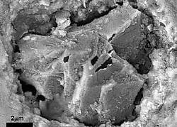 Een diamantje, ingebed in zirkonium. Thorsten Geisler en Alexander Nemchin<br>