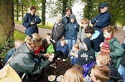 Het vierde leerjaar van De Zandloper maakte als eerste onder leiding van gids Magda Polfliet kennis met de natuur van Zomergem.Vacas<br>