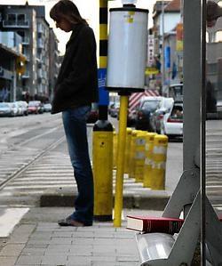 Voorlopig wordt slechts twintig procent van de zwerfboeken 'gevangen'.Michiel Hendryckx