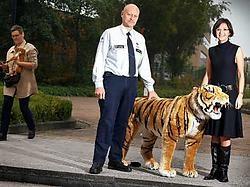Gedeputeerde Hilde Claes en dierenagent Herman Misotten passen op een pluchen tijger. Yorick Jansens<br>