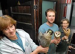 Asielbeheerder Katrien Werbrouck en haar medewerkers hebben veel te weinig ruimte in de huidige locatie van het Vogelopvangcentrum. Michel Vanneuville