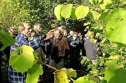 Om de theorie aan de praktijk te toetsen, brachten de boseigenaars een bezoek aan een privébos in de Maarkebeek-<br>vallei. <br>David Stockman<br>