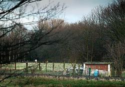 Oude stallen en koterijen zijn vaak bedekt met platen in asbestcement. Inge Van den Heuvel<br>