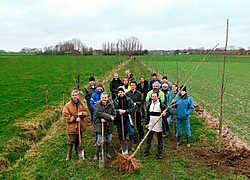 De Torenvalk herstelt een eeuwenoude bomenrij tussen 't Meike en 't Goed te Karel in Tielt.Frank Meurisse<br>