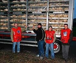 De staking begon gisteren in alle vroegte. Enkele vrachtwagens met levende kippen konden het slachthuis niet in. Louis Verbraeken