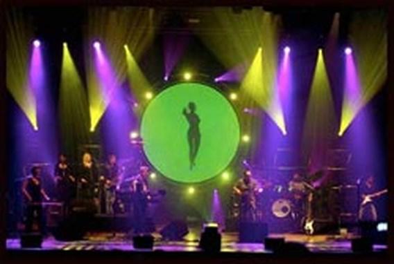 Spirit of Pink Floyd sloopt muurtje in Antwerpen