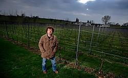 Peter Colemont in zijn wijngaard Clos d'Opleeuw: 'Wijn maken moet ontspannend zijn.'Yorick Jansens<br>