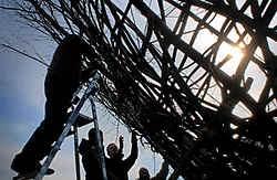 Leerlingen van het Spia en Mo Makhi (rechts) bouwen aan het nest. Katrijn Van Giel<br>
