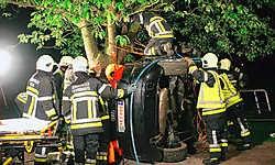 De brandweer had ruim anderhalf uur tijd nodig om de zwaargewonde chauffeur uit het wrak te bevrijden. Stijn Hermans