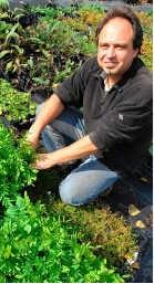 Freddy Sparenberg van Ecoflora: 'De kwekerij beslaat ruim een hectare. We kweken enkel inheemse wilde planten.' Yvan De Saedeleer