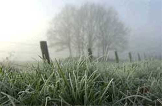 Koudste ochtend van het jaar