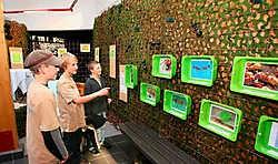 De tentoonstelling over mieren zit goed in elkaar, maar door de maximumfactuur vinden de scholen hun weg niet meer naar het ecocentrum.Louis Verbraeken