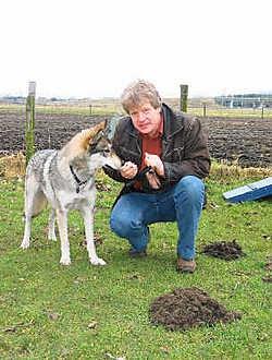Henk Plompen, met Renco: 'Hij voedt zich met kippen en konijnen, maar mensen hoeven geen schrik te hebben.'zvd