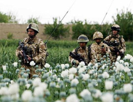 Amerikanen tegen oorlog in Afghanistan