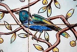 Ook azulejo's behoren tot het decor van sommige tuinen. jv