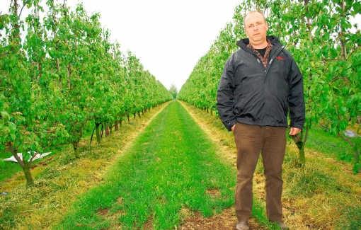 Kris Wouters voert de helft minder fruit uit naar Rusland dan normaal.Egide Lismond