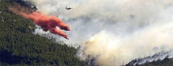 Bosbranden behoorlijk onder controle