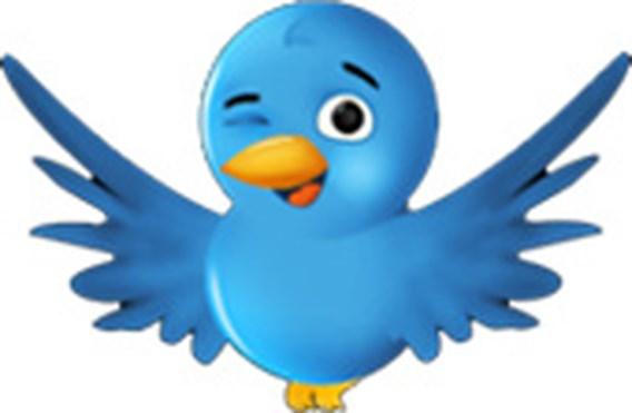 Twitter terug na cyberaanval