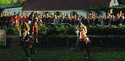 De steeple, waaraan zeven paarden deelnamen, vormde gisteravond de kers op de taart van de rennen. Marc Vergote