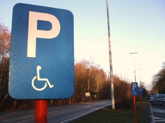 De Padt wil strengere aanpak van fraude met parkeerkaarten