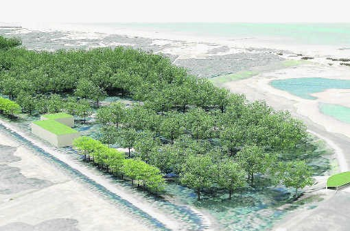 De plannen voor het Zwin omvatten de bouw van een nieuw bezoekerscentrum en een observatiegebouw. nmi