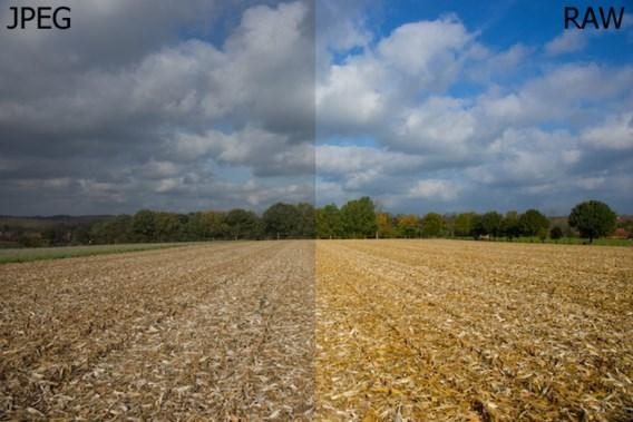 Werk je best met JPEG of RAW?