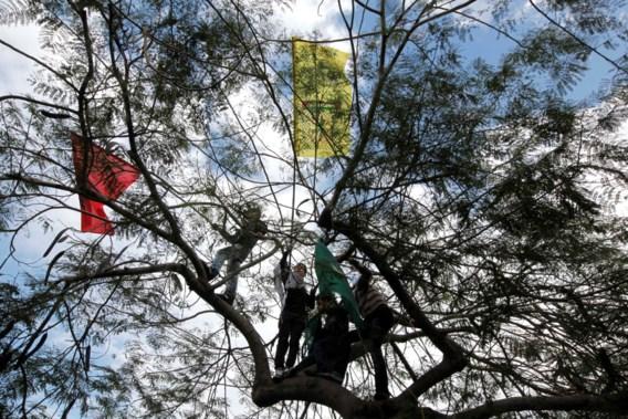 School laat jongen bijna uur in boom zitten