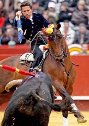 Geen stierengevechten meer in Catalonië