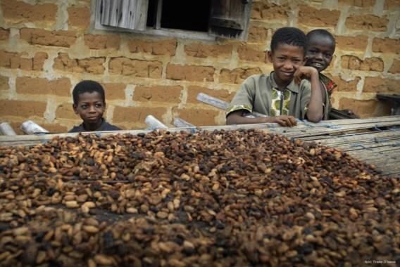 Cacaoprijs schiet omhoog door crisis Ivoorkust