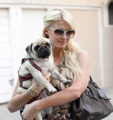 Paris Hilton schuldig aan contractbreuk